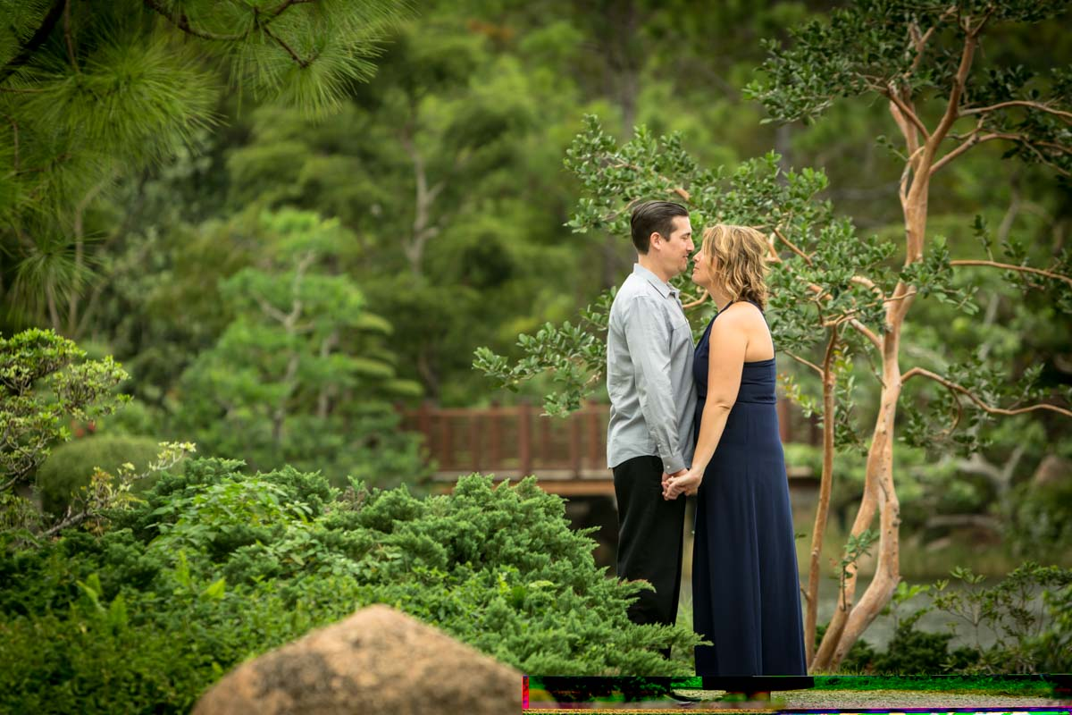 Crystal & Eric's Boca Raton Engagement Photography at Morikami Japanese Gardens Pictures